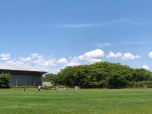 土門拳記念館の芝生